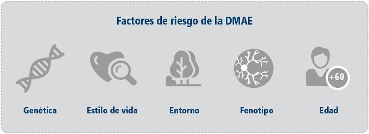 riesgos DMAE x web 6Nov-CAST