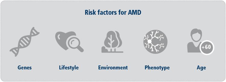 riesgos DMAE x web-ENG 14Nov (1)